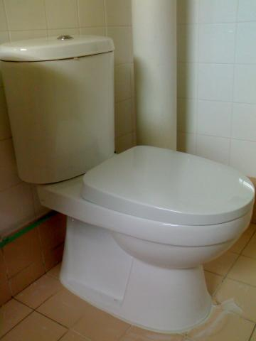 wc, water closet, toilet bowl, jamban, closestool